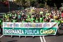 Marea Verde por la Educación