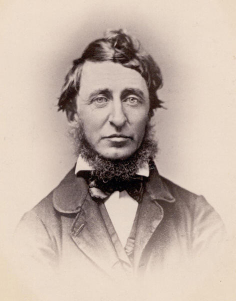 Henry David Thoreau retrato